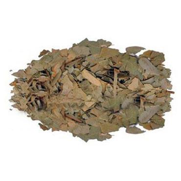 Avokado Yaprağı (250 Gr)