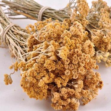 Civanperçemi (500 Gr)