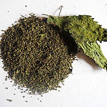 Isırgan Tohumu (100 gr)